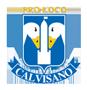 Logo Pro Loco Calvisano